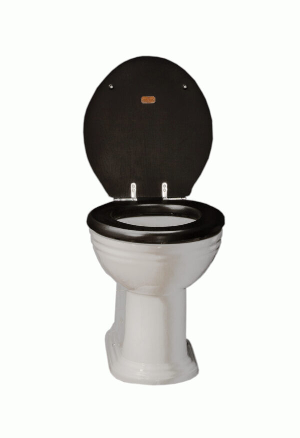 Thomas Crapper Venerable Back-to-Wall Toilet with BTW Seat (open)Seat